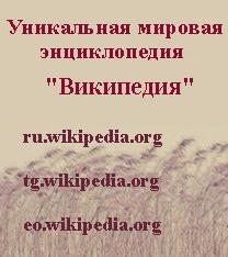 Русская версия Википедии